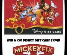 """The """"Win A $50 Gift Card from Mickey Fix"""" Contest Part 2 (Closed)"""